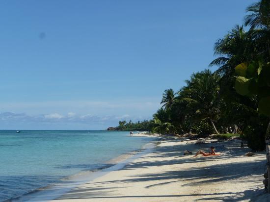 little-corn-island-beach