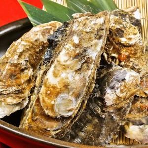 福岡天神で牡蠣食べ放題の「個室居酒屋 磯っこ商店」がアツい!