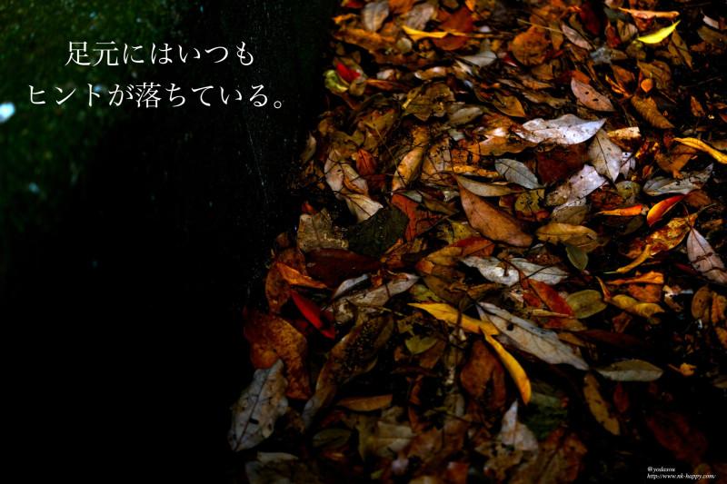 DSCF3379_Fotor