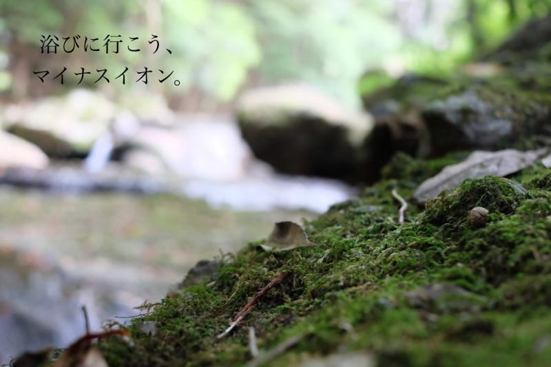 DSCF4119_Fotor