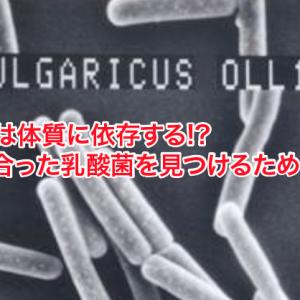 自分に最適なヨーグルト(乳酸菌)を見つけるためのまとめ