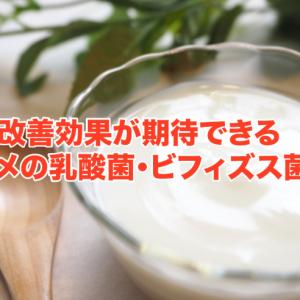 花粉症の改善効果が期待できるオススメの乳酸菌・ビフィズス菌5選!