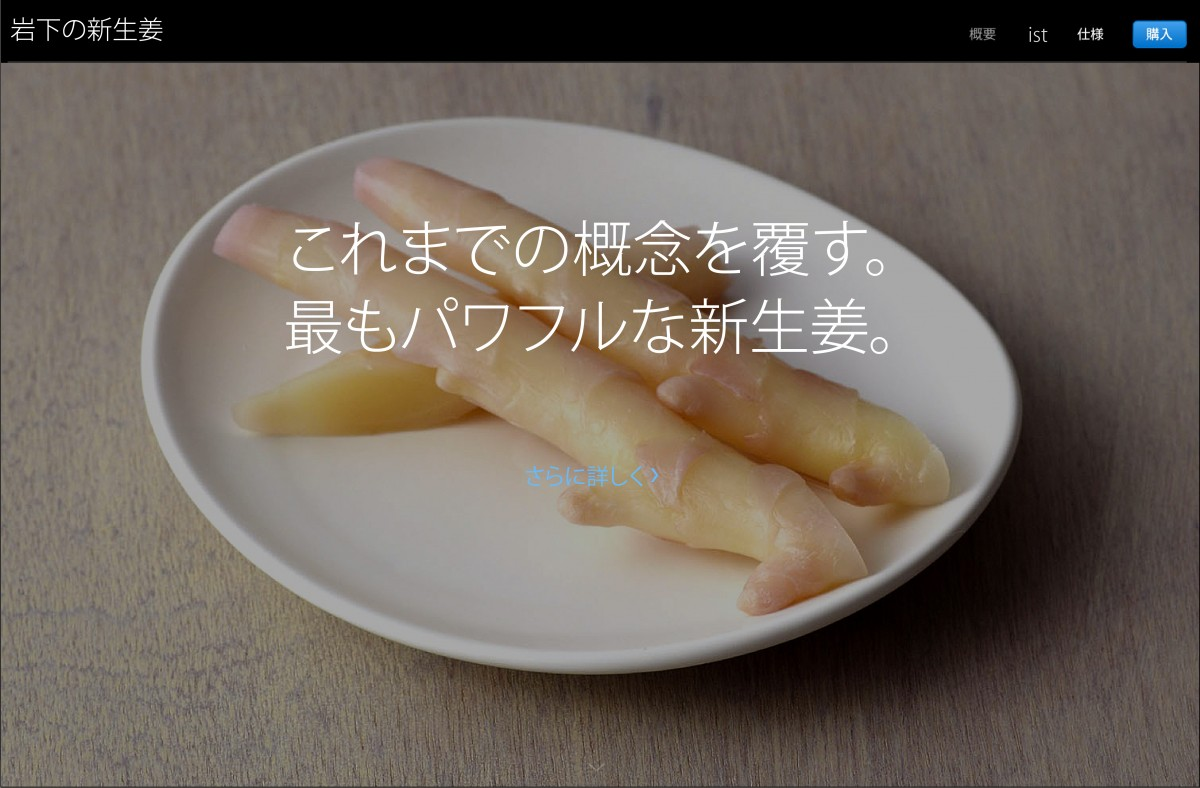 iwashita-5