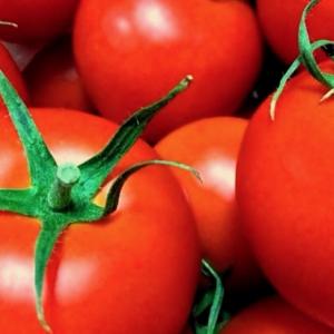リコピンを最も多く含んだ野菜ジュース・トマトジュースを徹底検証!