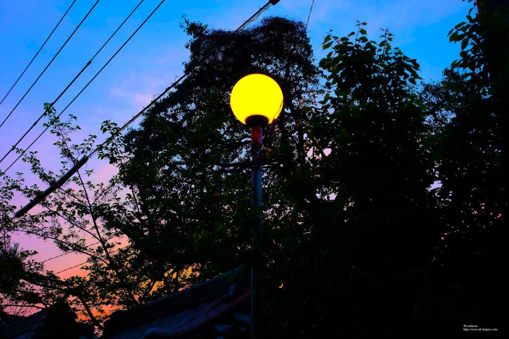 壁紙14街灯と朝日