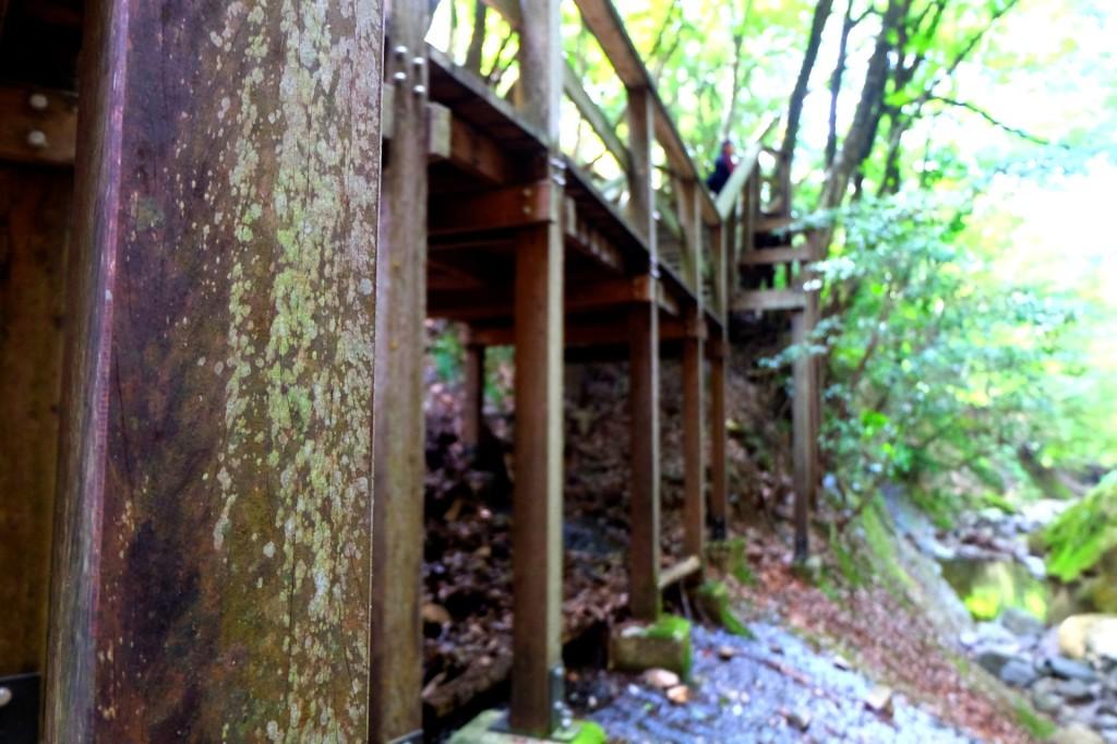蛇渕キャンプ場2