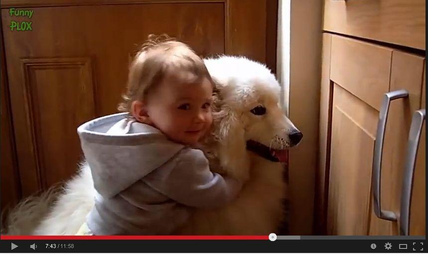 【超癒し動画】犬+赤ちゃん=超癒し