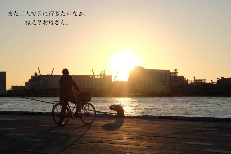 DSCF3988_Fotor