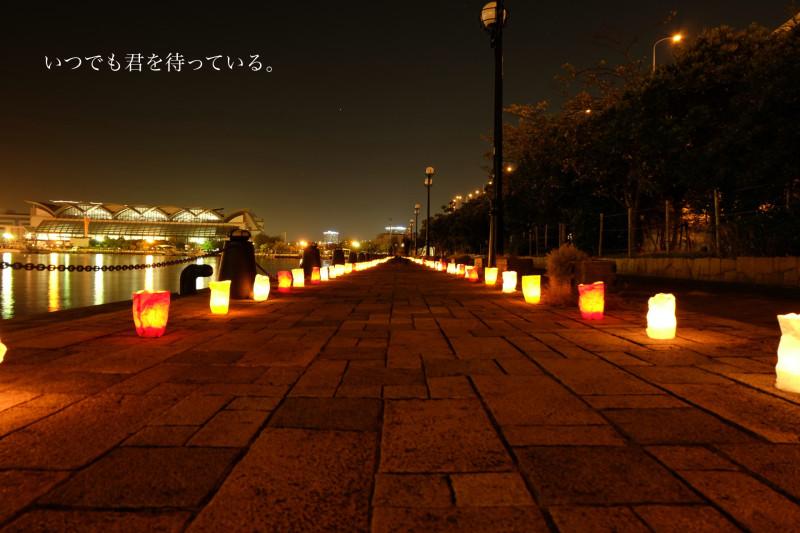 DSCF4271_Fotor