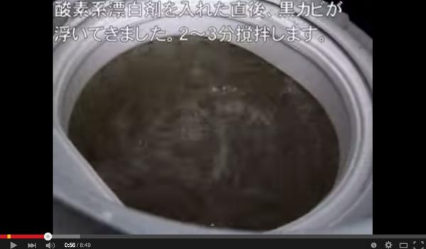【日常の裏側】10年使った洗濯槽はカビに覆われた世界・・・