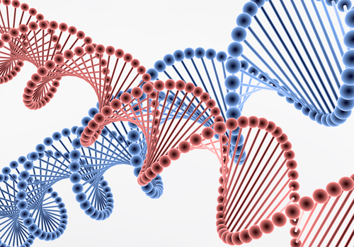 【デザイナーベイビー】中国が世界初ゲノム編集を実施!人の受精卵を遺伝子操作