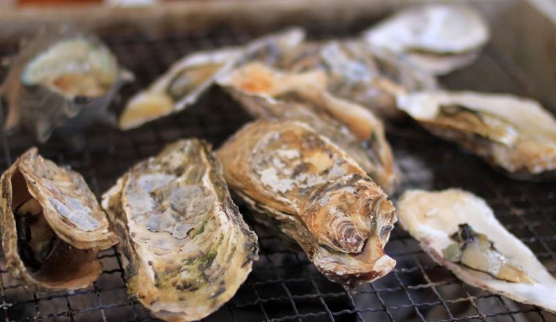 【2015年保存版】福岡市内の牡蠣小屋人気おすすめベスト8