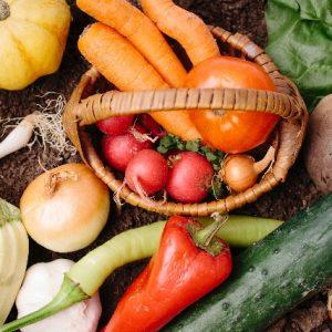 腸内フローラを改善する食べ物とは!食物繊維・発酵食品・オリゴ糖をバランス良く