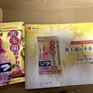 乳酸菌の力EXを購入。開封してみた。同封物や商品レビュー